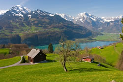 Swiss Property In The Spring
