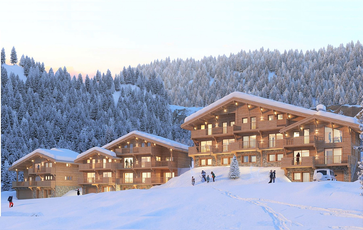 The project of chalets for sale in Chatel