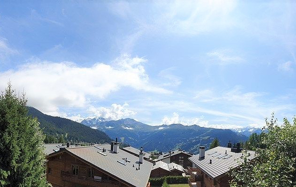 Views from the chalet