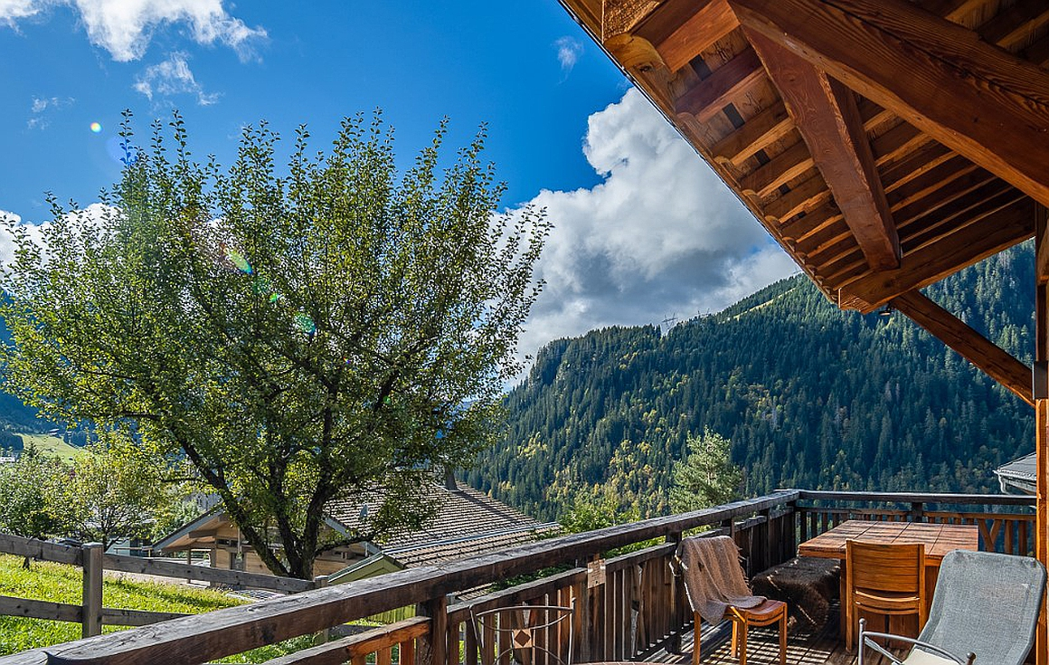 The amazing chalet for sale