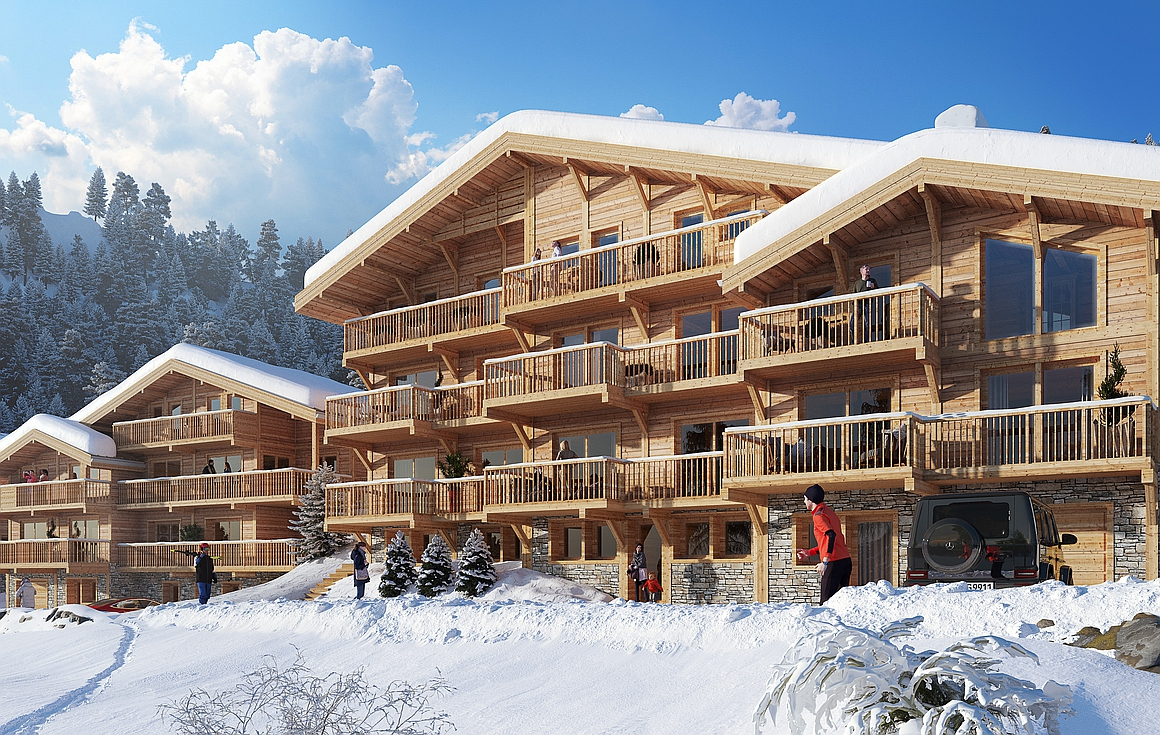 The project of chalets for sale