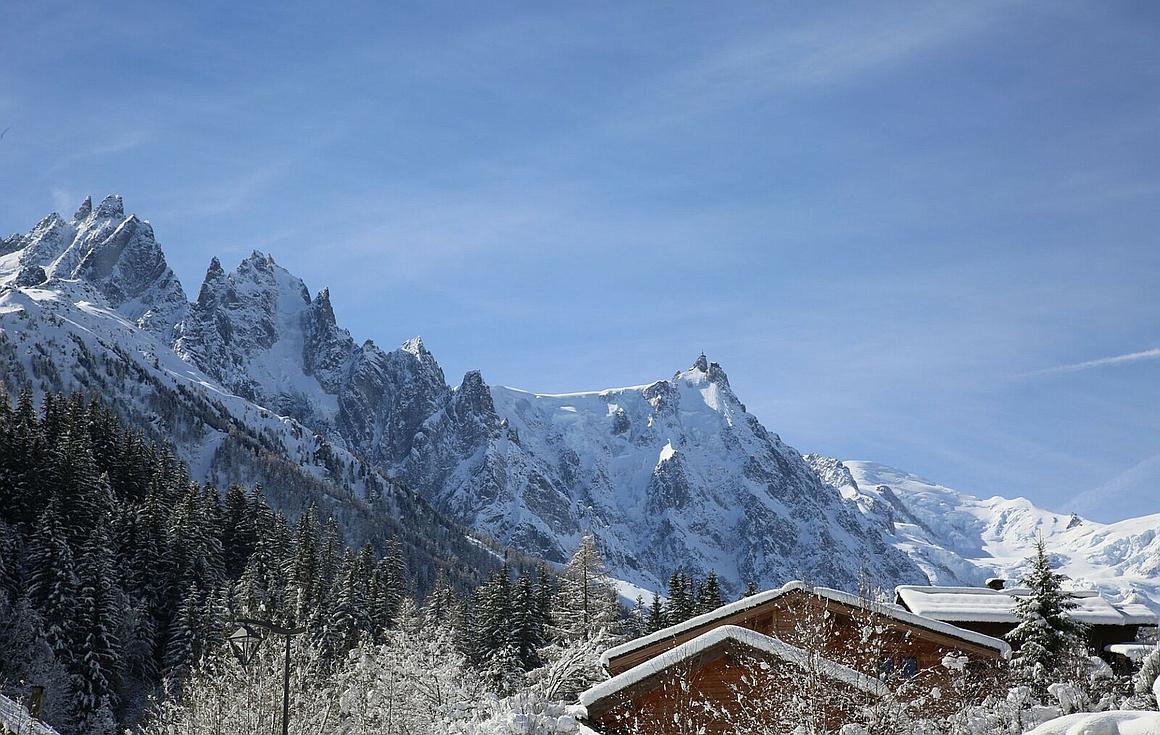 View from the Chalet for sale in Chamonix