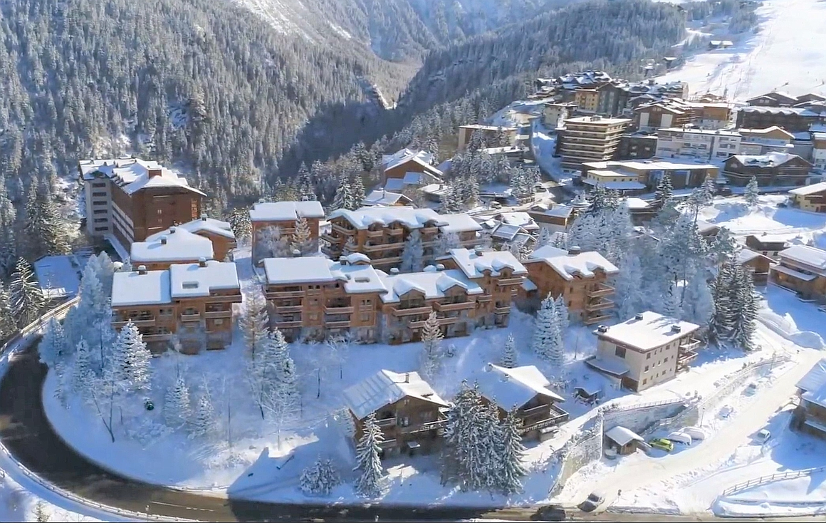 The implantation of the alpine chalets
